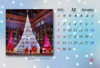 '19.12月カレンダー(イルミ).jpg