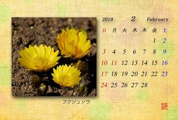 '19.2カレンダー.jpg