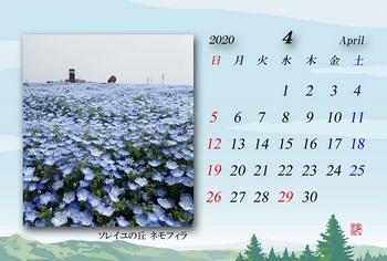 2020.04月カレンダー・ネモフィラ.jpg